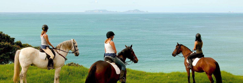 Horse Riding - Sandy Bay Horses
