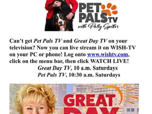 WISH-TV to live stream Pet Pals TV!