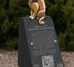 Midwest Tennis Foundation embraces Pirate Cat memorial