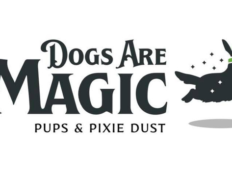 Dogs are Magic goes to Neverland!