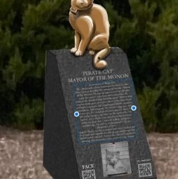 Pirate Cat's memorial statue to be unveiled