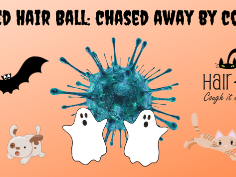 Haunted Hair Ball canceled, donations needed