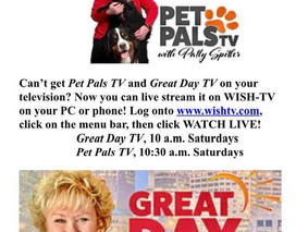 WISH-TV to live stream Great Day TV!