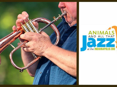 Two concert series winding up at Indy Zoo