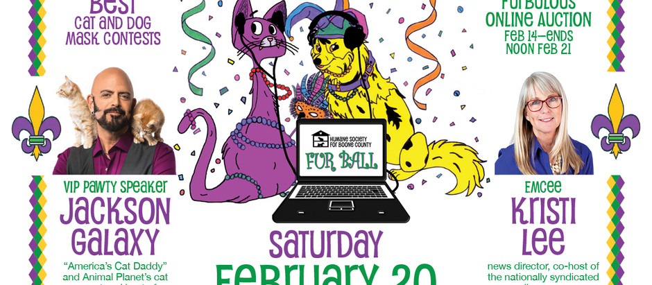 Boone County Humane's Fur Ball goes virtual