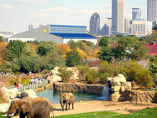 Zoo expects to draw $882 million to Indianapolis