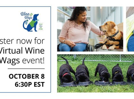 Wine & Wags goes virtual to help ICAN service dogs