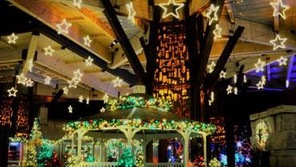 Zoo lights among best in country