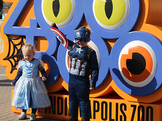 Catch the last few days of ZooBoo!