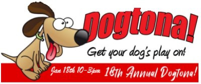 Dogtona! family event coming up Saturday