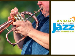 Two concert series returning to Indy Zoo