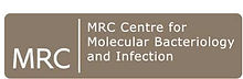 MRC-CMBI-logo--tojpeg_1561536782852_x2.j