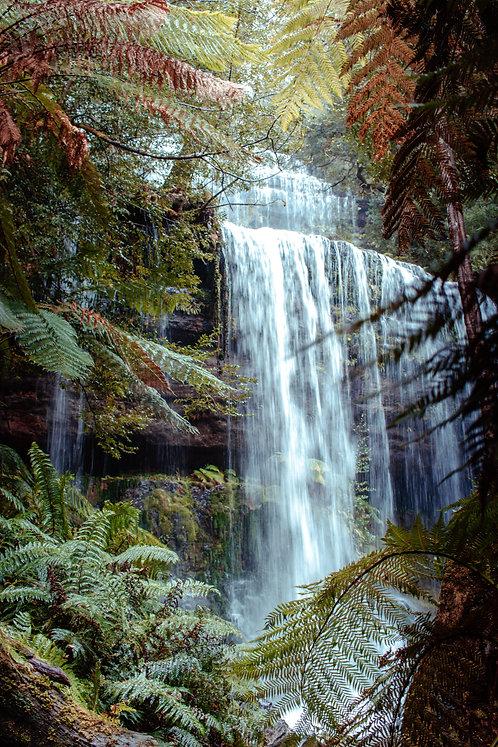 Russell Falls Magic