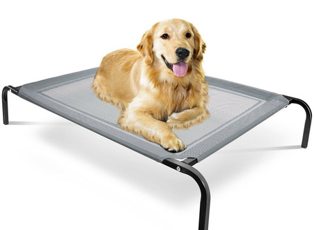 Elevated Dog Bed Lounger Sleep Pet Cat Raised Cot Hammock for Indoor Outdoor