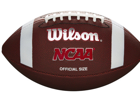 Wilson NCAA Red Zone Series Composite Football - Official Size