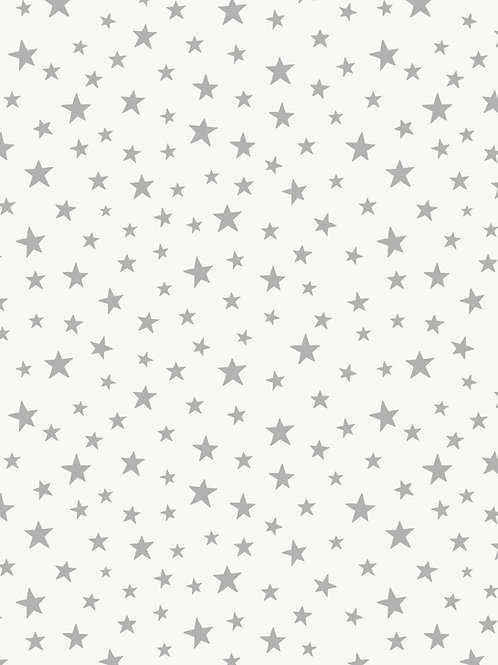 Silver star on white