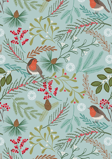 Robin on Winter blue