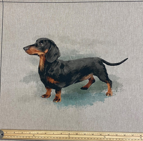 Dachshund cushion panel