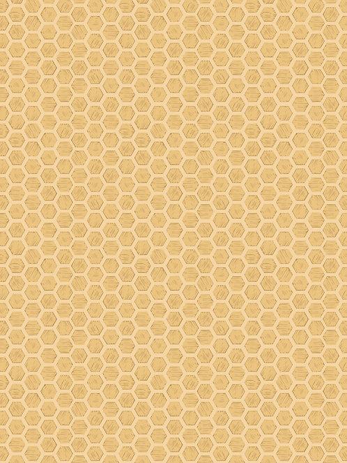 Honeycomb on honey