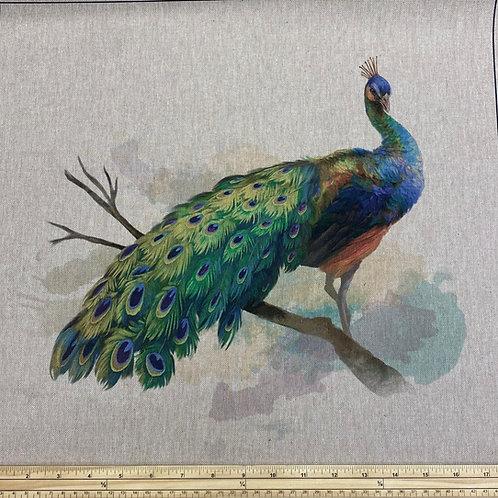 Peacock cushion panel