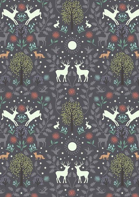 Mirrored Woodland Night-time