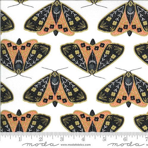 Dainty moths ivory/poppy
