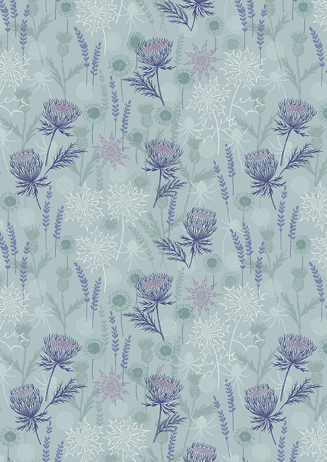 Light blue thistle