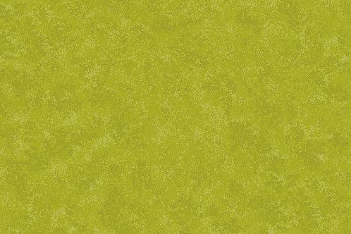 Grass G36