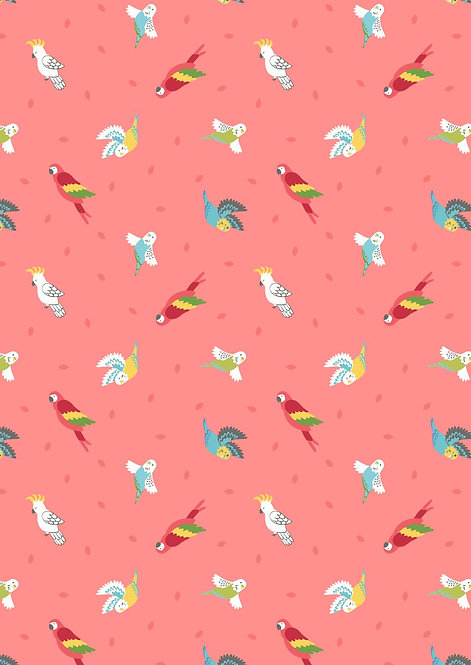 Birds on Coral