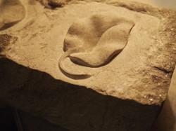 York stone leaf