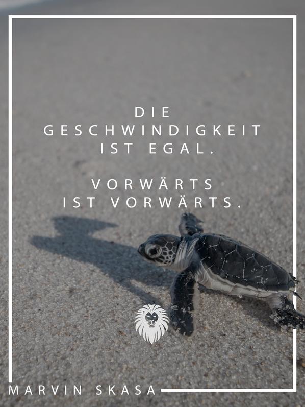 14._Skasa_Instagram_Post__-_Vorwärts.pn