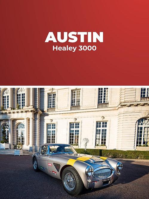 Austin Healey 3000 • Baptême passager