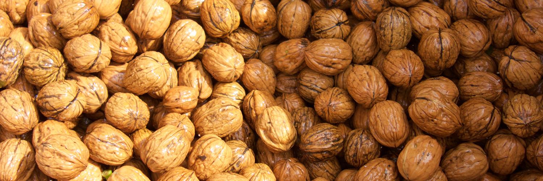 Slider Web - Finca Beth - nuts