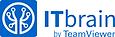 ITbrain.png