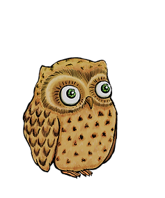 hibou%20gros%20yeux_edited.png