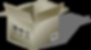 carton2_edited.png