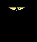 chat noir.png