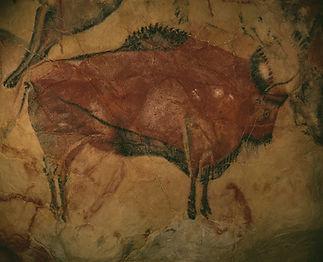 bison-1171794_960_720_edited.jpg