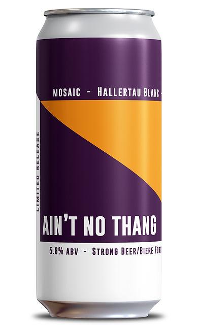 IPA 1 - Aint No Thang - Single.jpg