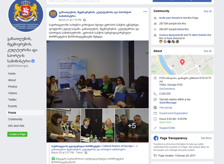 The Council of Europe expert on the working visit to Georgia, Edith Siva, met with representatives