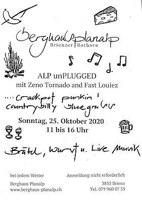 planalp unplugged 2.0.jpg