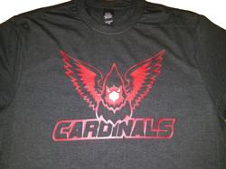 Cardinals Softball