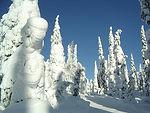 crown-snow.jpg