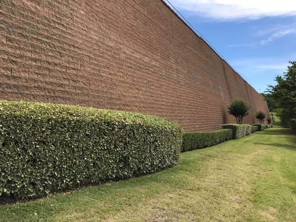 """The """"Wall to Nowhere"""""""
