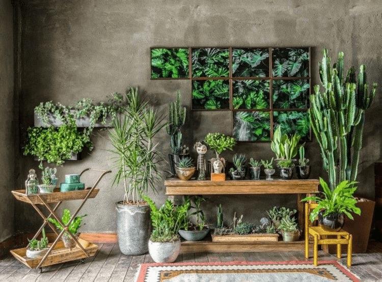 Urban Jungle na decoração