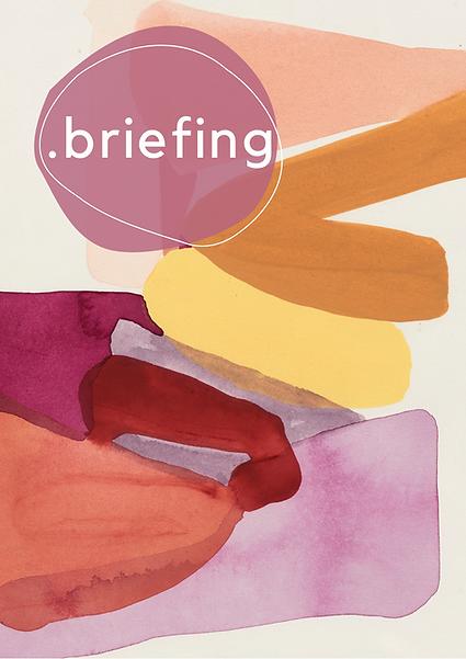Briefing de projeto/consultoria