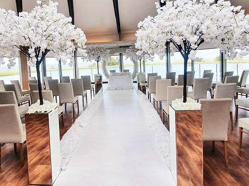 White wisteria blossom trees