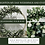 Thumbnail: Eden arch with foliage and ivory roses 2m