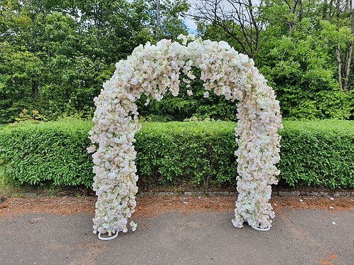 Amelia weeping blossom arch