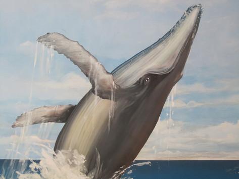 Whale Mural.jpg